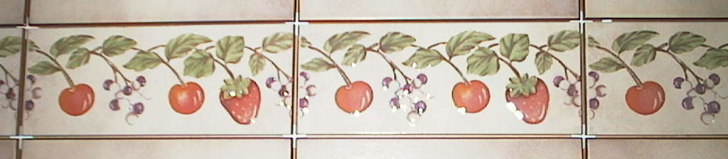 Toledo Border Ceramic Tile 3 x 8 by Recer